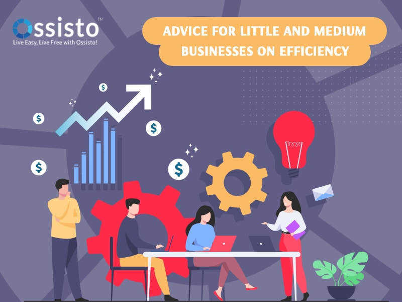 Advice for Little and Medium businesses on Efficiency